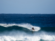 The_reef_-_sloane-3-ryan_burch