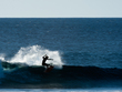 The_reef_-_sloane_-_ryan_burch