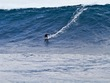 Mick_curley_photo_stormsurfers_turtle_wa-8160
