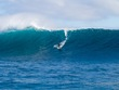 Mick_curley_photo_stormsurfers_turtle_wa-8635